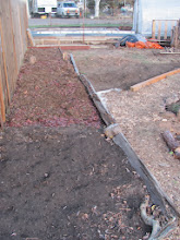 Photo: worked on a bed outside mandala- probably asparagus, cold frame and such. layered leaves, unfinished compost from last year, and  will add remainder of purchased soil.