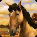My Horse