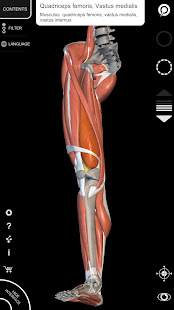 App Muscle | Skeleton - 3D Atlas of Anatomy APK for Windows Phone