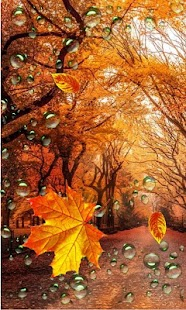 Autumn Streets live wallpaper - náhled