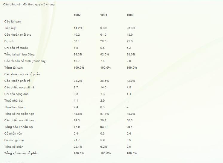 Các bảng cân đối theo quy mô chung