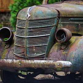 International  by Todd Reynolds - Transportation Automobiles