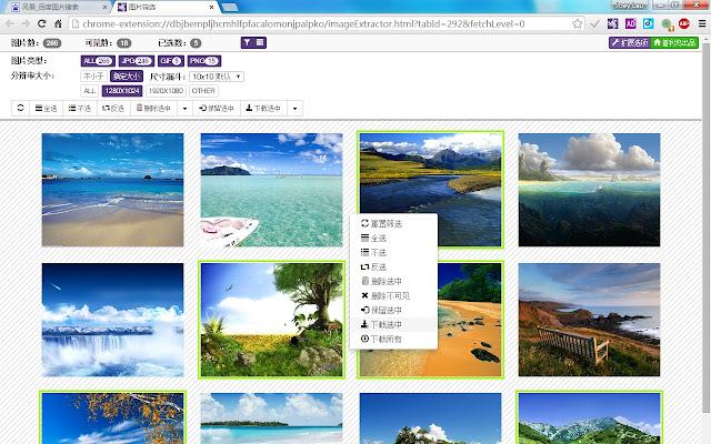 download imagefap galleries chrome