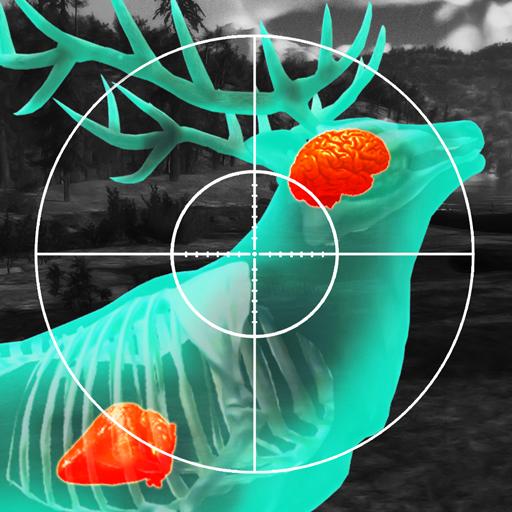 Wild Hunt: Sport Hunting Games. 让我们打猎