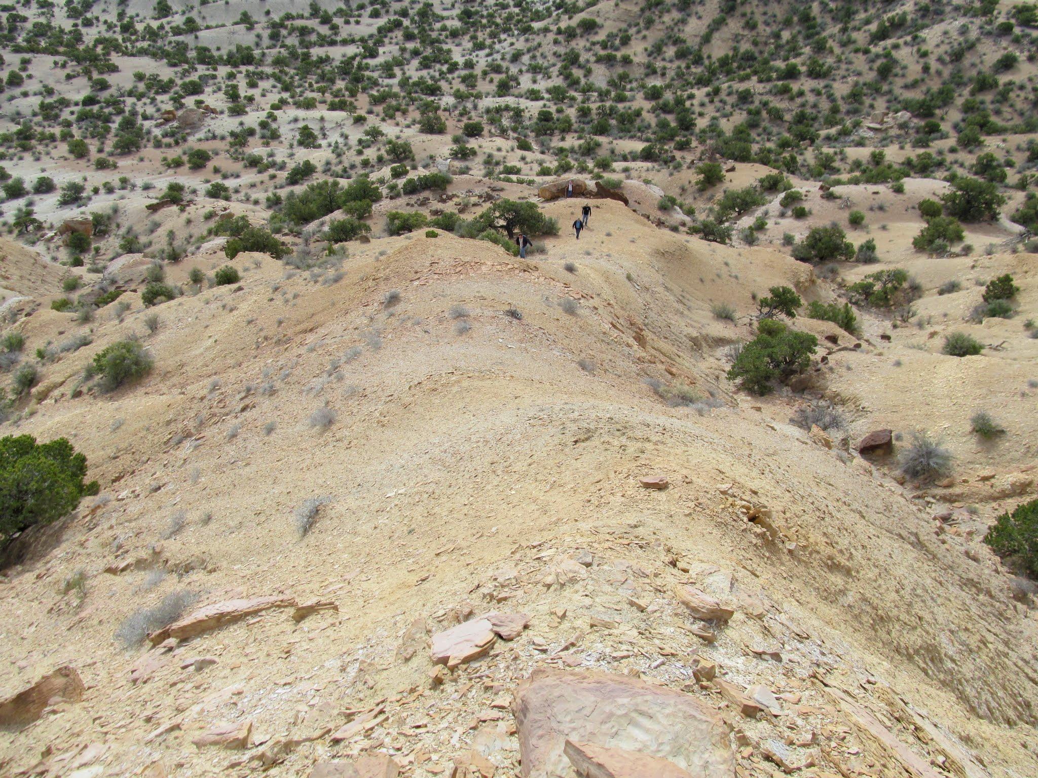 Photo: Up a ridge