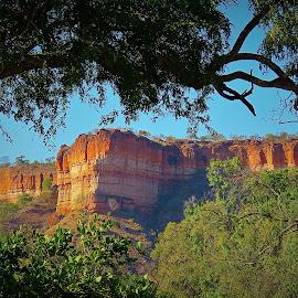 GONAREZHOU Red Cliffs by Kurt Haas - Landscapes Mountains & Hills ( mountains, zimbabwe, natural beauty, nature, nature photo, natur, stunning, mount, national geographic, nice, national park, beautiful, amazing, mountain, nature et paysages, nature photography, national parks )