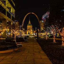 ST Louis Christmas by Darrin Ralph - Uncategorized All Uncategorized ( light, city, christmas tree, night, tree, saint louis, christmas,  )
