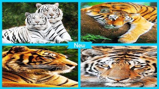Flame Tiger Wallpaper - náhled