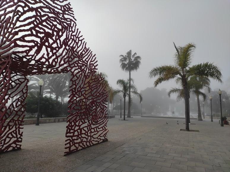 Niebla en Almería: así desaparecía esta tarde el Parque Nicolás Salmerón.