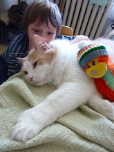Photo: Some Cats are Saints...  .... and here is Saint Seiss with my eight year old son... and his monkey! Aware, but still smiling...and purring! I've never seen a gentler, more calm cat. Believe me... being around an eight year old boy is not a calm experience! Amazingly, the boy has learned to be gentle with the cats... and I credit Seiss' kind patience and love for that! Teaching the human kittens by example! :D ------------------------------------------------------------------------------------------ Can't let a +CATURDAY!go by without posting something for my Kitty Kohorts +Jules Falk Hunter+Shantha Marie Fountain+Khrystiane Friedliand the original Caturday crew +Lee Daniels& +Christophe Friedli... who are hopefully enjoying lots of loving energy!