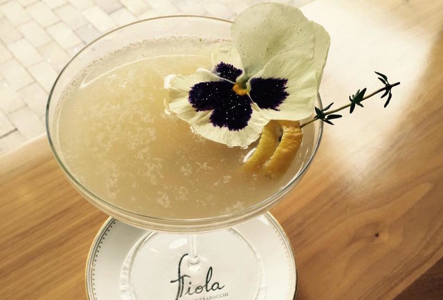 A craft cocktail at Fiola.
