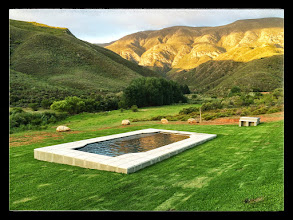 Photo: Large 4x9m salt water pool