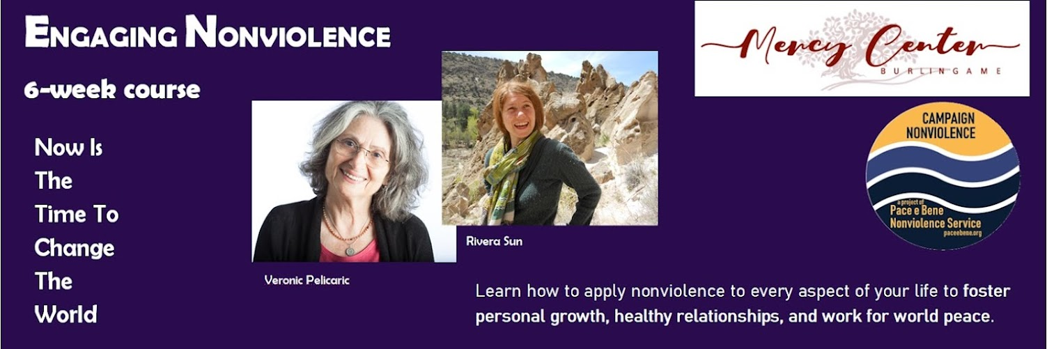 Engaging Nonviolence - 6 Week Online Course