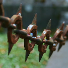 Chain by Dominic Jacob - Artistic Objects Other Objects ( metal, chain, cemetery, rusty, metallic, rust,  )