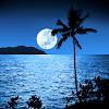live wallpapers clair de lune
