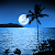 Moonlight Live Wallpapers file APK for Gaming PC/PS3/PS4 Smart TV