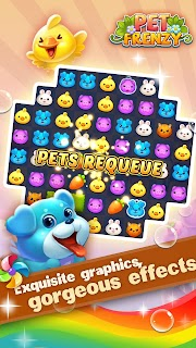 Pet Frenzy screenshot 01