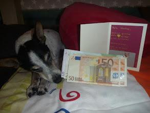 Photo: Mimoso und seine Freunde sagen Dankeschön!!! :-))) Montse war totall baff über die grosse Spendenhöhe von über 1000€ und hat sich riesig gefreut. Sie sagt ganz ganz gross Dankeschön!! :-))). Ganz viele grosse und kleine Spendebeiträge von vielen lieben Menschen machten dies möglich! DANKE an Euch alle!!!! :-)))