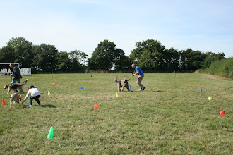 Photo: DogBasics Fun Day 2013 - Spoon Race Slalom