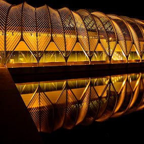 Polytechnic Nights! by Ken Wagner - City,  Street & Park  Night ( architect, schools, reflections, design, nightscapes,  )