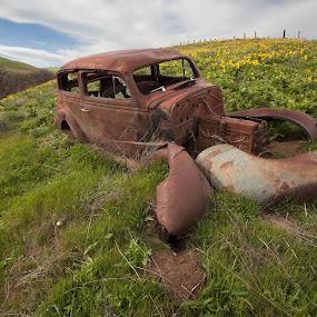 by Glenn Miller - Transportation Automobiles ( car, hillside, mountain, sunflowers, rust )