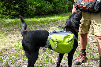 Photo: Lucy sporting her new pack