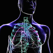 Photo: Exkurze z biologie na výstavu The Human Body exhibition v Praze (úterý 10. duben 2012).