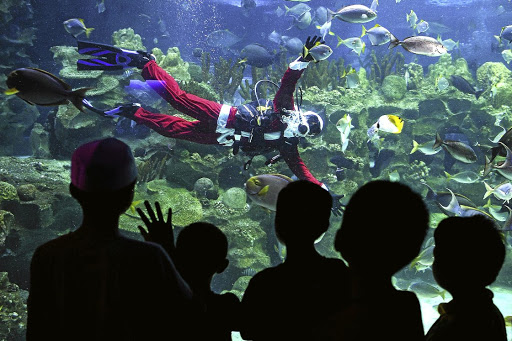 'TIS THE SEASON ...  A diver wearing a Santa Claus costume swims inside a fish tank at the Aquaria KLCC in Kuala Lumpur. The scuba-diving Santa Claus and other Christmas-themed activities are some of the prime attractions for visitors to the underwater park.