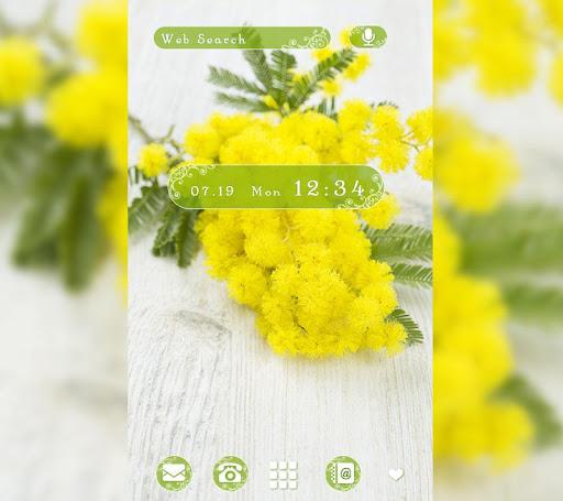 Mimosa flowers-無料着せ替えアプリ