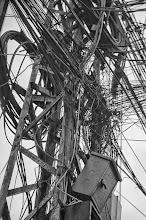 Photo: spaghetti in black 4