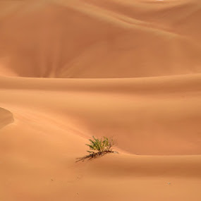 alone by Irma Andriani - Landscapes Deserts