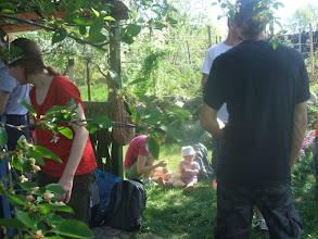 Photo: Nagyhegyszőlői kertben fiatalok foglalnak el
