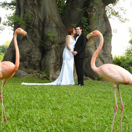 Fotógrafo de bodas Jorge Mendoza (jorgemendoza). Foto del 14.11.2017