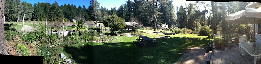Photo: Spring has sprung panorama! Home sweet home: