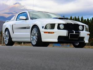 マスタング クーペ  GT Californiaspecialのカスタム事例画像 T さんの2020年11月28日21:30の投稿