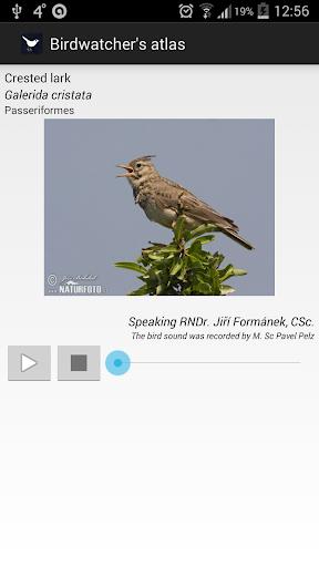 Screenshot for Birds of Europe FULL in Hong Kong Play Store