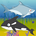 Shark Feed Icon