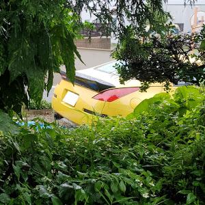 フェアレディZ Z33 H 17/3 バージョンTのカスタム事例画像 ichii - イッチー - 🐝さんの2020年06月13日22:08の投稿
