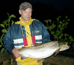 Photo: Kymijoki meritaimen 7,8kg