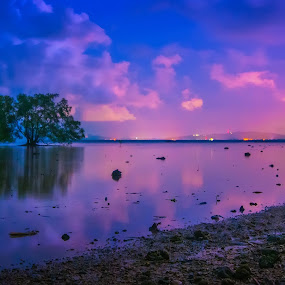 wait a tree by Fadzlie Baharun - Landscapes Weather ( pwcredscapes )
