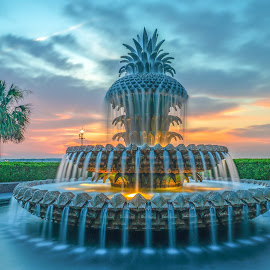 pineapple fountain at sunrise in charleston by Peter Schoeman - City,  Street & Park  Fountains ( symbol, fountain, usa, harbor, american, scenic, building, america, scene, view, landmark, sky, pineapple fountain, sightseeing, carolina, town, downtown, water, morning, south carolina, coast, waterfront, dawn, colorful, photography, southern, sunrise, city, destination, tourism, tourist, charleston south carolina, charleston, public, vacation, place, park, architecture, famous, historic, fanciful, sculpture, attraction, pineapple, sunset, illuminated, location, travel, architectural, landscape )