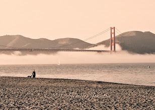 Photo: POTD 01.03.12 Retro Golden Gate Bridge