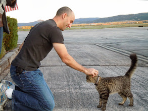 Photo: Friendliest kitty is still there!