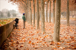 Dentro l'autunno