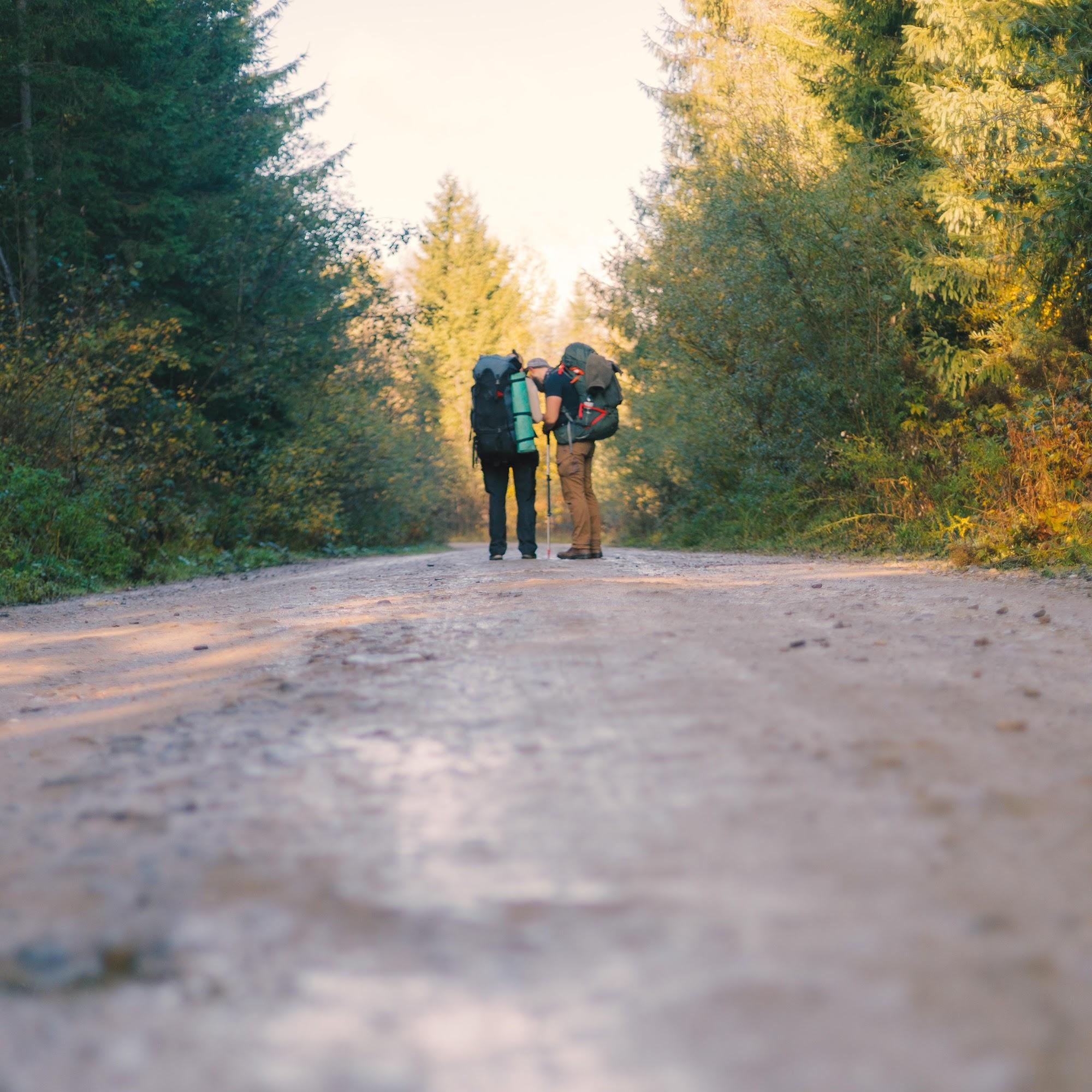 Дорога до Вороненко