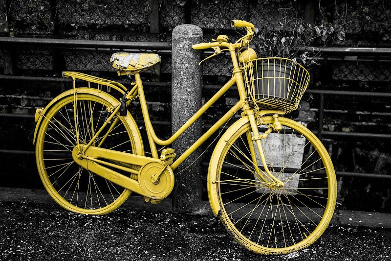 Bicicletta  di mauroc