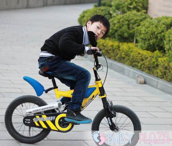 Xe đạp trẻ em Royalbaby B-3 3