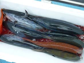Photo: 前回はよかったですが・・・オオツさん、今回はちょっとさみしい釣果です。ホンガツオは5匹入りました。