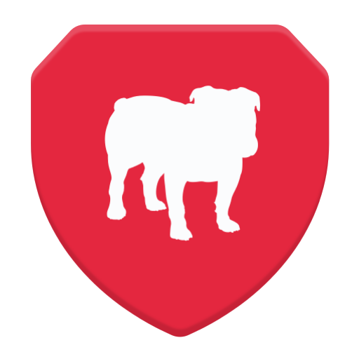 Image result for bullguard vpn playstore