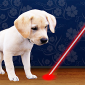Laser Pointer for Dogs Joke